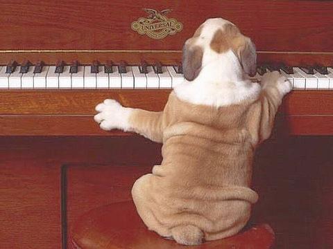 ショパン・小犬のワルツのトリル